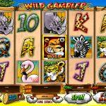 Trò chơi Châu phi hoang dã – Wild Gambler tại Dafabet