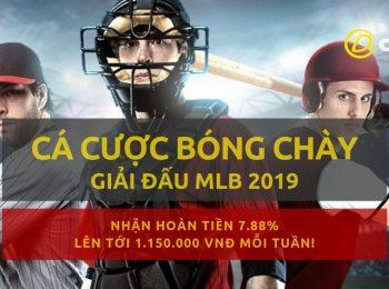 Khuyến mãi hoàn tiền Dafabet OW giải bóng chày MLB trong tháng 7/2019