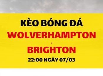 Wolverhampton – Brighton